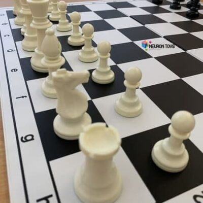 Белые шахматные фигуры ShachQueen